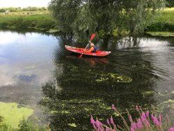 DS web kayak